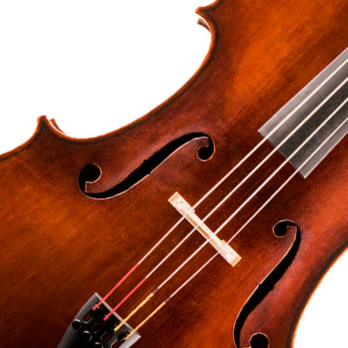 Image of a Double Bass