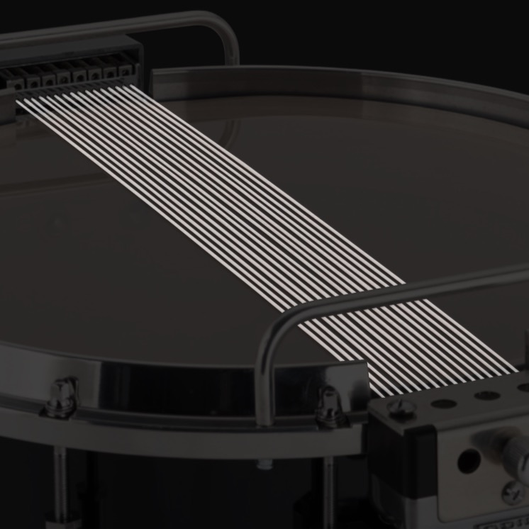 Drum showing its snare gut