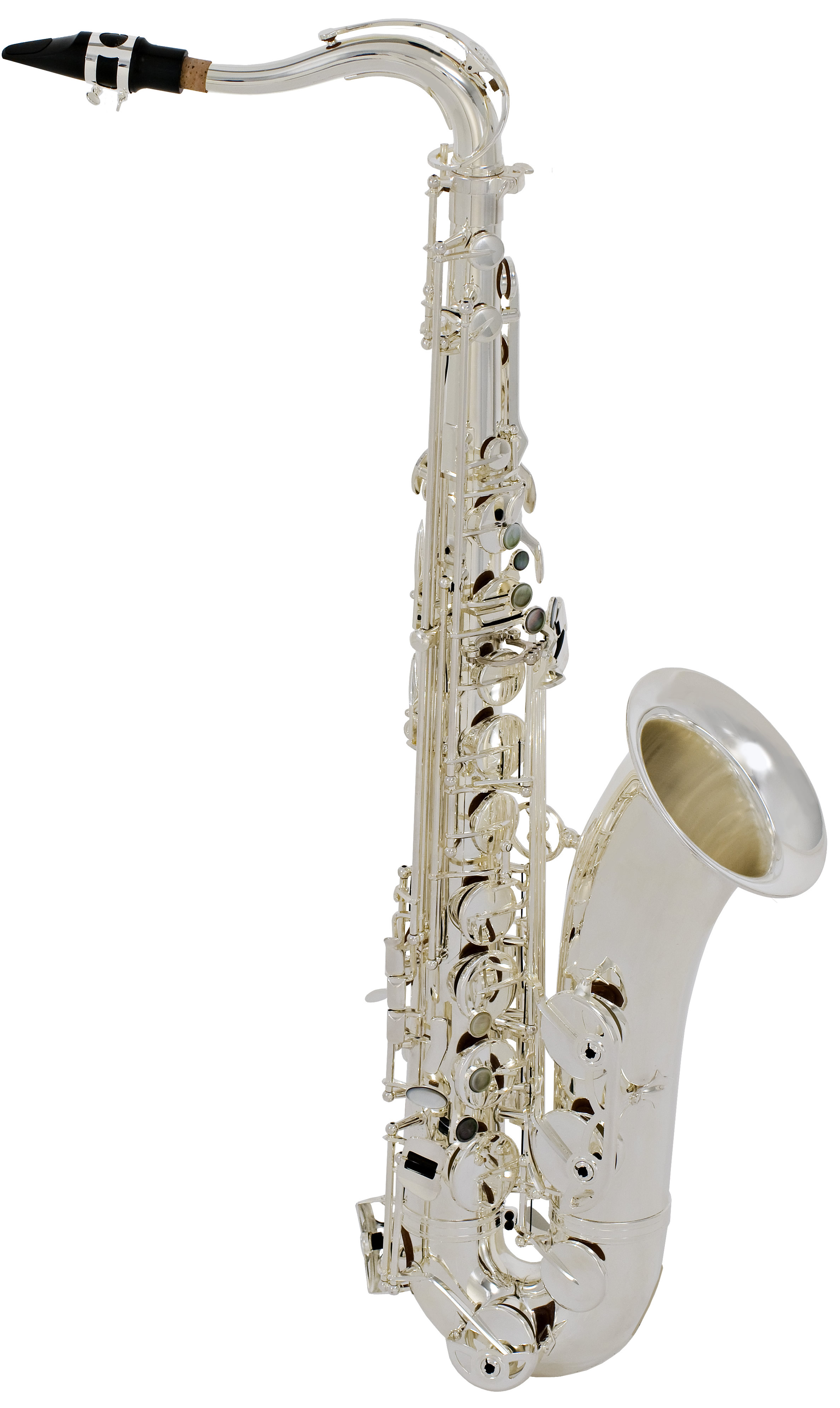 Step-Up Model STS280RS Tenor Saxophone