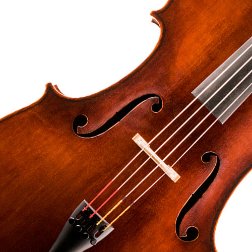 image of a Cellos