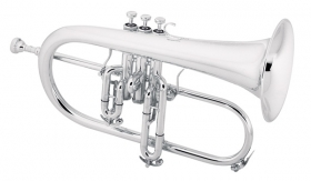 Professional Model 2020SP Flugelhorn