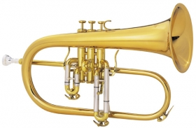 Professional Model 2020 Flugelhorn