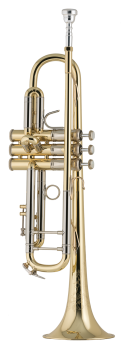 image of a 19037 Professional Bb Trumpet
