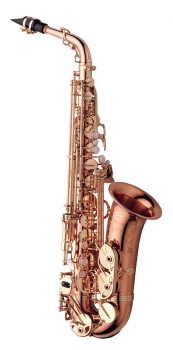 image of a AWO20PG Professional Alto Saxophone