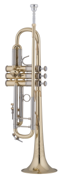 image of a 19043 Professional Bb Trumpet