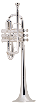 image of a 189S Professional Eb/D Trumpet