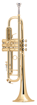 image of a LT18072 Professional Bb Trumpet