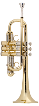 image of a AE190 Professional Eb Trumpet