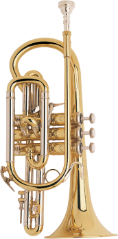 184ML Bb Cornet<br/>Professional